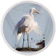 Crazy Egret Feathers Round Beach Towel