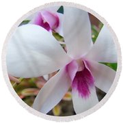 Creamy White And Hot Pink Orchid Round Beach Towel