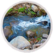 Creek Entering Andreas Canyon In Indian Canyons-ca Round Beach Towel