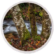 Creek With Trees Round Beach Towel