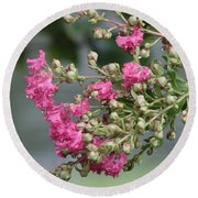 Crepe Myrtle After The Rain Round Beach Towel