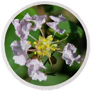 Crepe Myrtle Blossom Ring Round Beach Towel