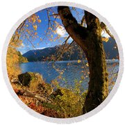 Crescent Through The Woods Round Beach Towel