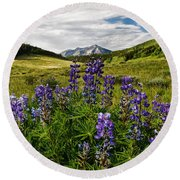 Crested Butte Lupines Round Beach Towel
