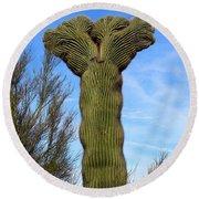Crested Cactus Round Beach Towel