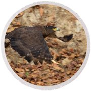 Crested Serpent Eagle Round Beach Towel