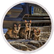 Cretan Cats-1 Round Beach Towel