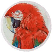 Crimson Macaw Round Beach Towel