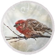 Croching Finch Round Beach Towel