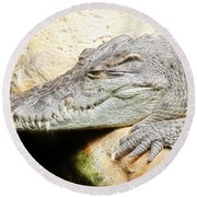 Crocodile Fractal Round Beach Towel