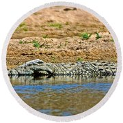 Crocodile In Watering Hole In Kruger National Park-south Africa Round Beach Towel