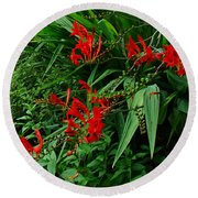 Crocosmia In Red Round Beach Towel