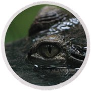 Croc's Eye-1 Round Beach Towel