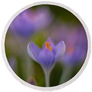 Crocus Ethereal Round Beach Towel