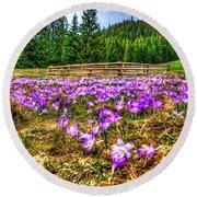 Crocus Flower Valley Round Beach Towel