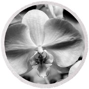 Cross Orchid Round Beach Towel