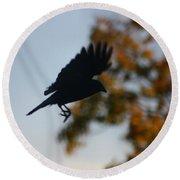 Crow In Flight 1 Round Beach Towel