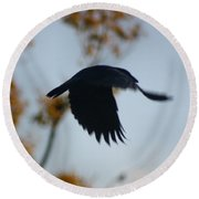Crow In Flight 4 Round Beach Towel