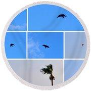 Crow In Flight Round Beach Towel