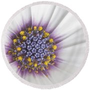 Crowning Glory Round Beach Towel