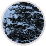 Crows Perch - Snowstorm - Snow - Tree Round Beach Towel