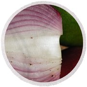 Crumby Onion  Round Beach Towel