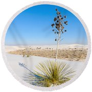 Crystal Dune Tree At White Sands National Monument In New Mexico. Round Beach Towel