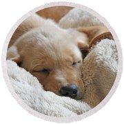 Cuddling Labrador Retriever Puppy Round Beach Towel