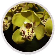 Cumbidium Orchid Round Beach Towel