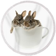 Cup Of Bunnies Round Beach Towel