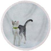 Curious Cat Round Beach Towel