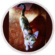 Curious Kitty Round Beach Towel