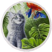 Curious Kiwi Round Beach Towel by Carolyn Steele