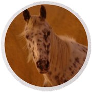 Curious Pony With Spots Round Beach Towel