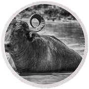 Curly Horns-black And White Round Beach Towel