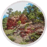 Custer State Park Ecology Round Beach Towel