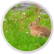 Cute And Fluffy - Digital Painting Effect Round Beach Towel