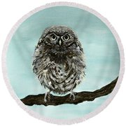 Cute Baby Owl Round Beach Towel