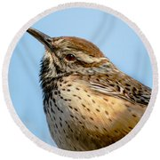 Cute Cactus Wren Round Beach Towel by Robert Bales