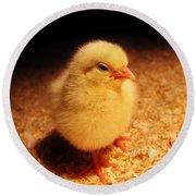 Cute Little Chick Round Beach Towel