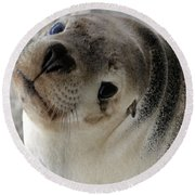 Cute Look 2 Round Beach Towel