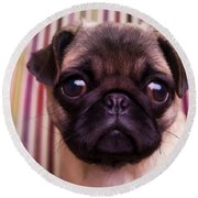 Cute Pug Puppy Round Beach Towel
