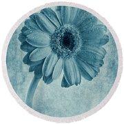 Cyanotype Gerbera Hybrida With Textures Round Beach Towel