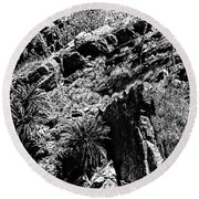 Cycads At Cliffs' Edge Black And White Round Beach Towel