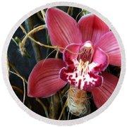 Cymbidium Flower Round Beach Towel