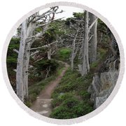 Cypress Grove Trail Round Beach Towel