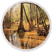 Cypress In The Swamp Round Beach Towel