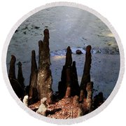 Cypress Roots Round Beach Towel
