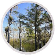 Cypress Swamp Round Beach Towel by Rudy Umans