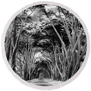Cypress Tree Tunnel Point Reyes Round Beach Towel